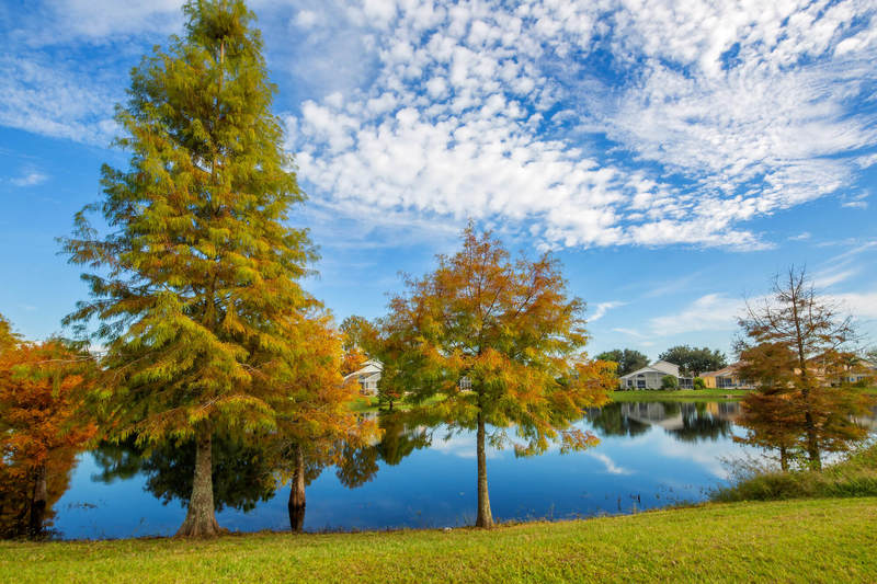 Oak Island lake