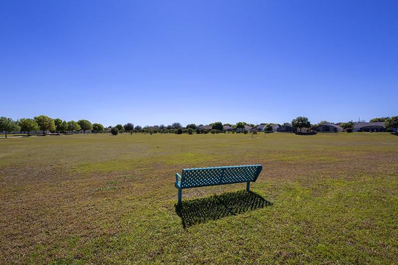 Soccer pitch at Orange Tree