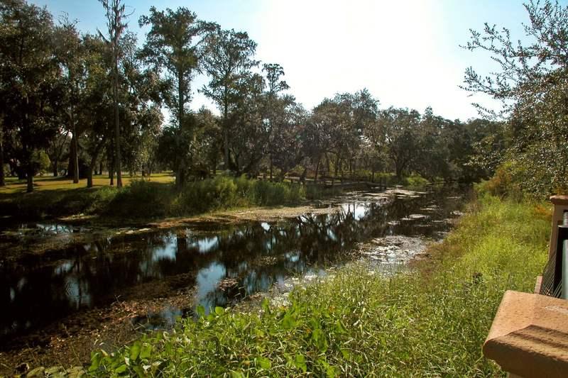 Boggy Creek at Villa Sol